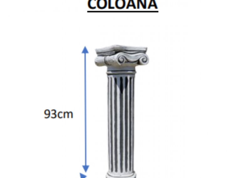 Coloana